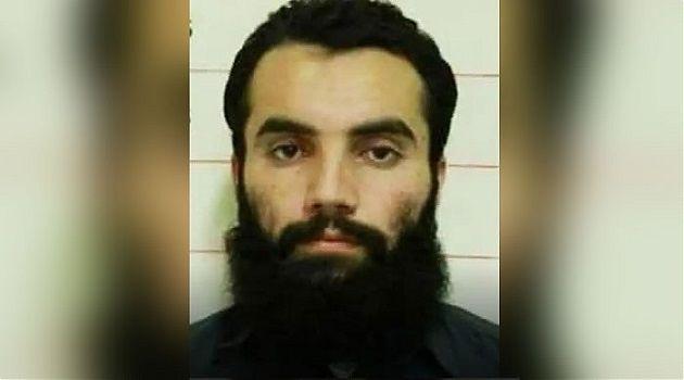انس حقاني همراه با 7 تن ديگر از زندان آزاد شدند