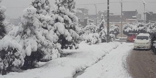 جانباختن 8 نفر براثر بارش شدید برف در هرات