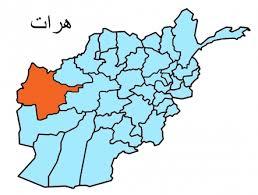 ۱۲ سرباز خیزش مردمی در ولایت هرات کشته شدند