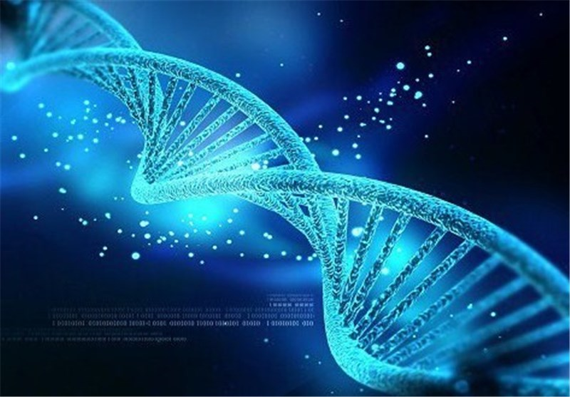 New Genetic Engineering Technique Could Help Design, Study Biological Systems